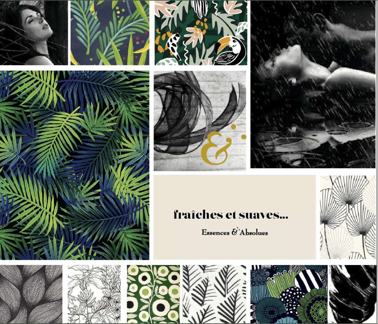 intérieur du livret les Boisés, du coffret Essences Absolues, création de Frédérique Hayaux du Tilly, graphiste designer c com'créa