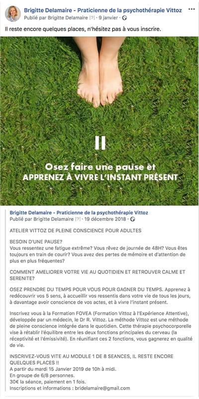 Exemple de posts Facebook créés par Frédérique Hayaux du Tilly, communication digitale c com'créa