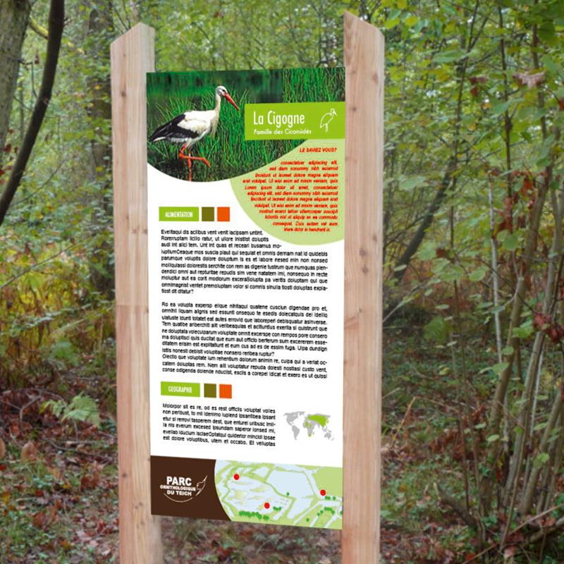 Panneau Oiseau la Cigogne issu de parc ornithologique du Teich, création de Frédérique Hayaux du Tilly, graphiste designer c com'créa