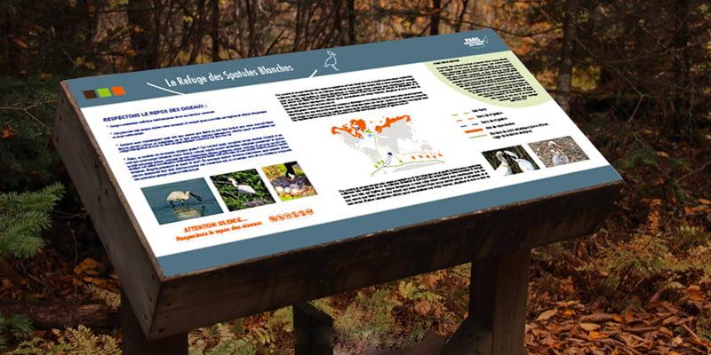 Panneau Refuge des spatules blanches issu de parc ornithologique du Teich, création de Frédérique Hayaux du Tilly, graphiste designer c com'créa