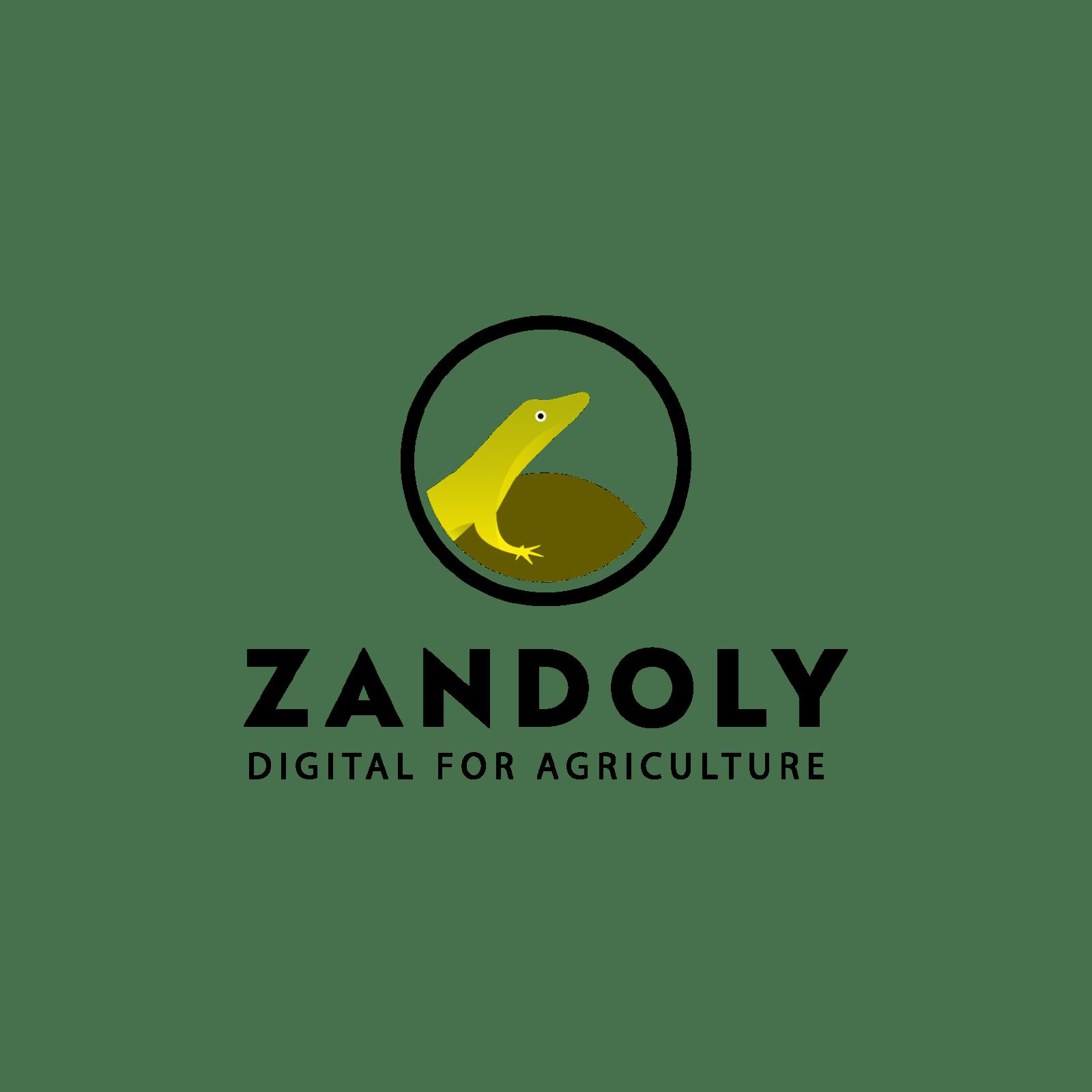 logo Zandoly, création graphique de logo de C Com'Créa