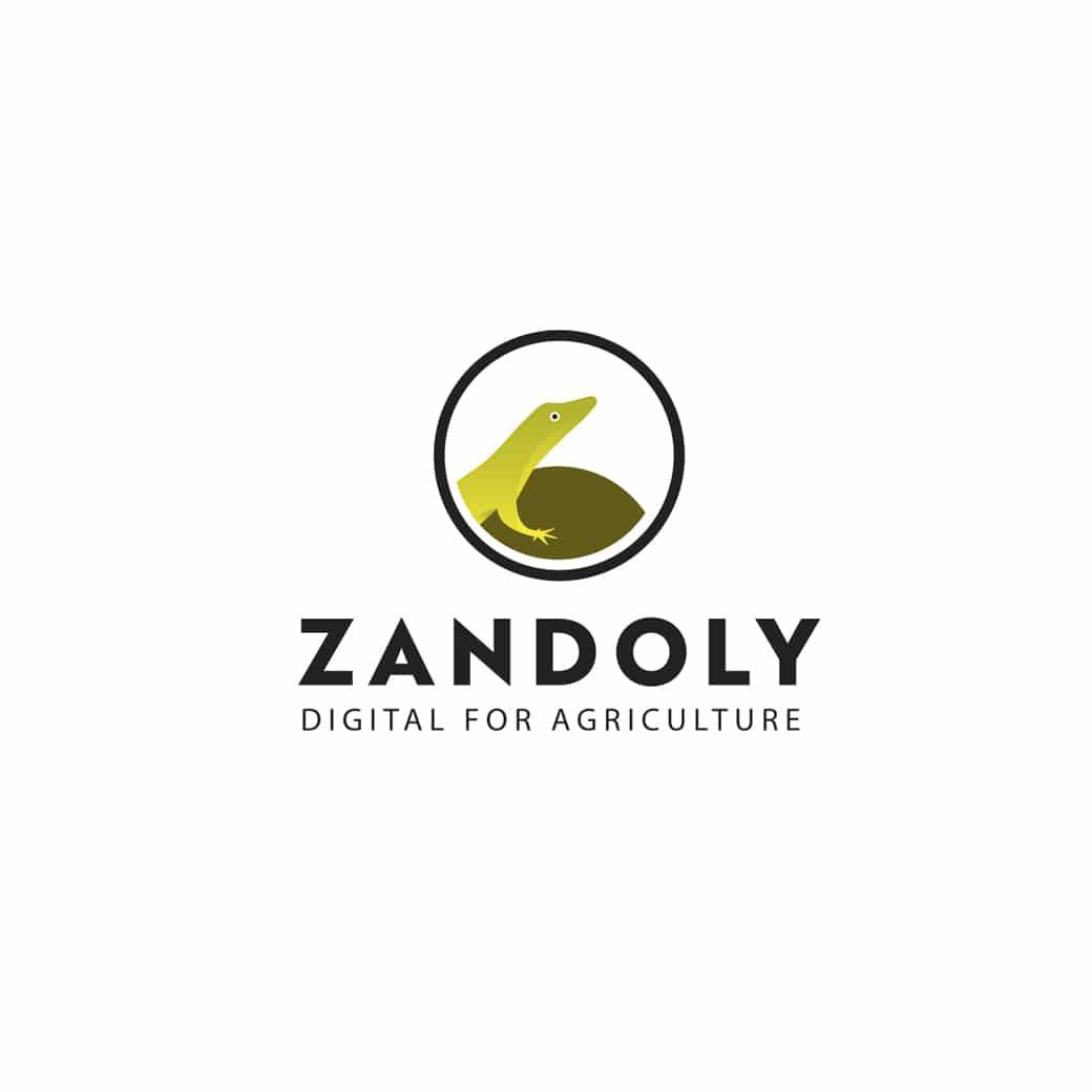 nouvelle création graphique logo Zandoly de C Com'Créa