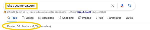 Astuce pour connaître le nombre de pages indexées d'un nom de domaine dans Google